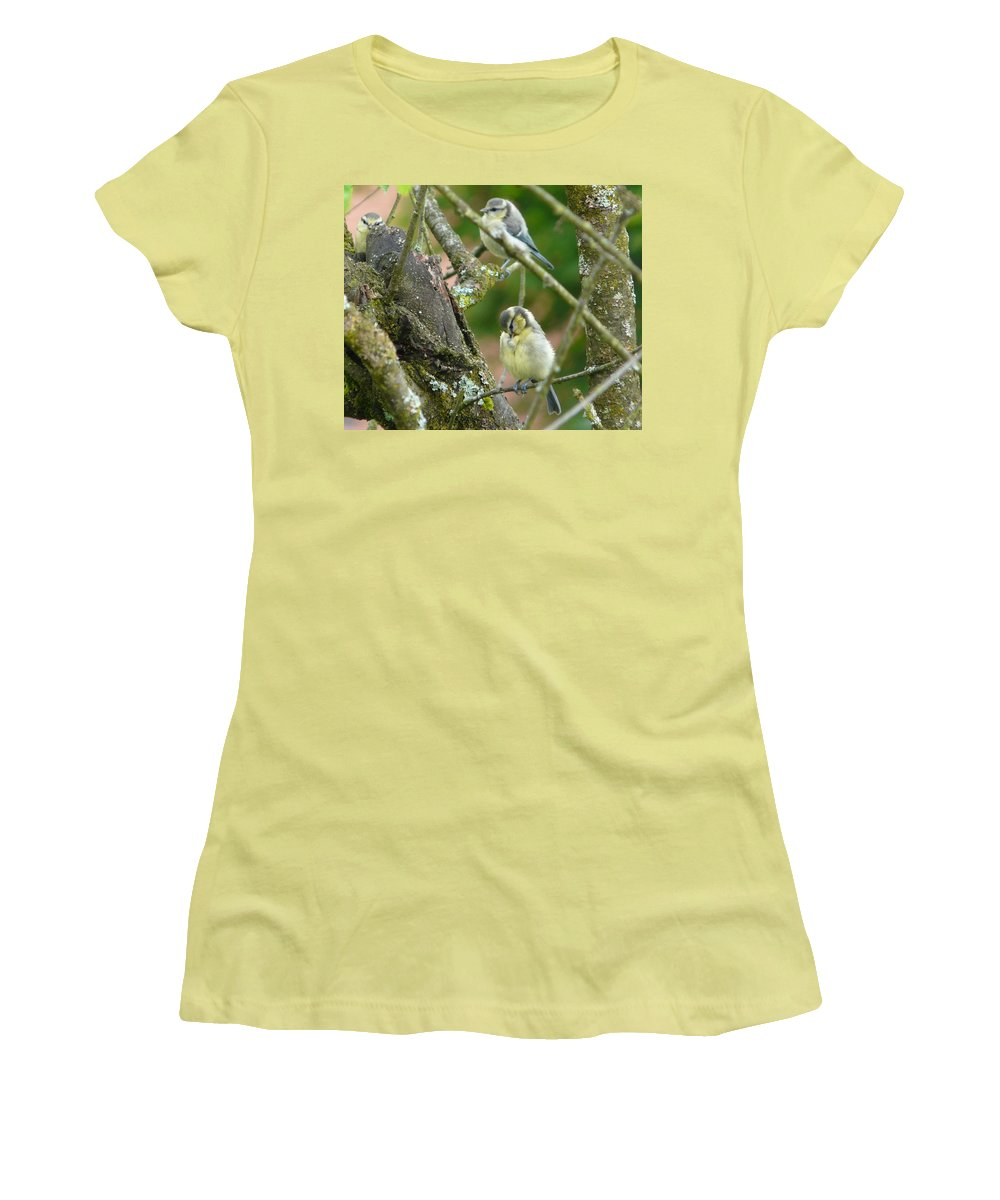 Bird Women's T-Shirt (Athletic Fit) featuring the photograph Busy Tree by Valerie Ornstein