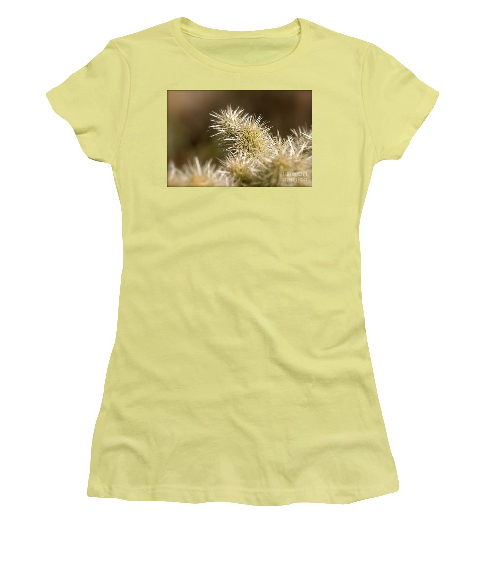 Cactus Women's T-Shirt (Athletic Fit) featuring the photograph Cacti by Nadine Rippelmeyer