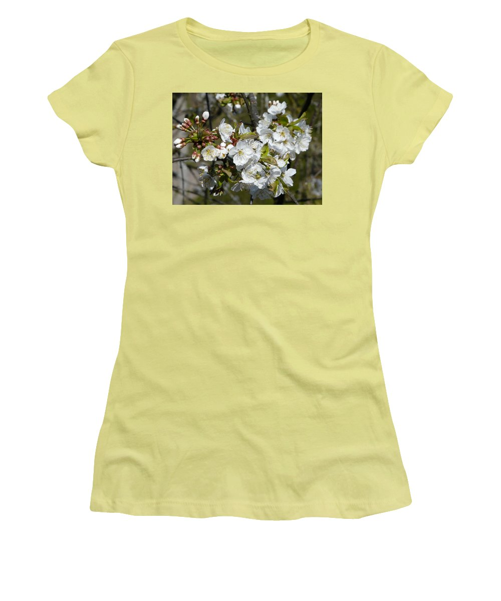 Cherry Women's T-Shirt (Athletic Fit) featuring the photograph Cherry Blossom by Valerie Ornstein