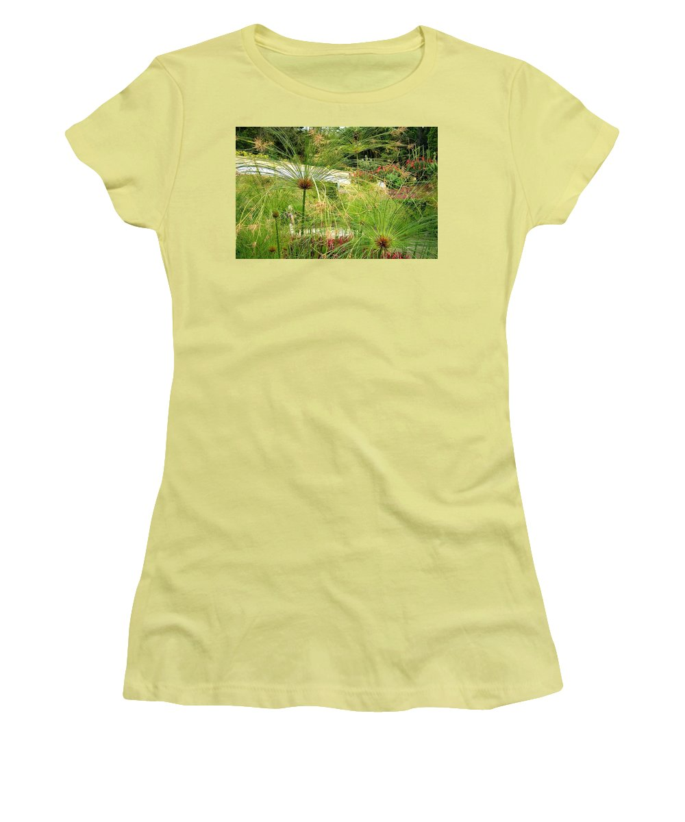 Landscape Women's T-Shirt (Athletic Fit) featuring the photograph Cyperus Papyrus - Bulrush by Valerie Ornstein