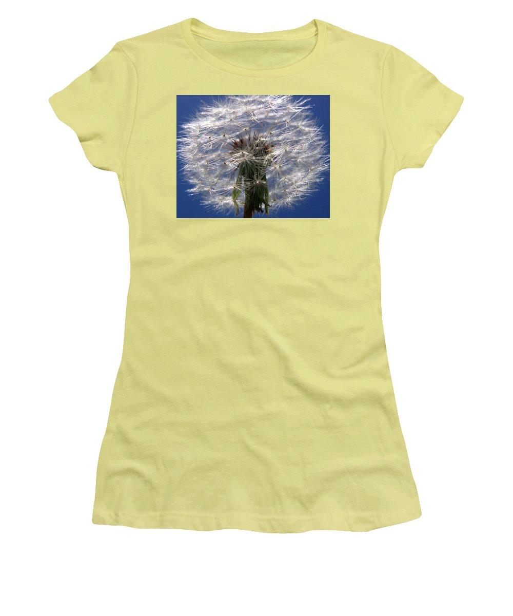 Dandelion Women's T-Shirt (Athletic Fit) featuring the photograph Dandelion by Ralph A Ledergerber-Photography