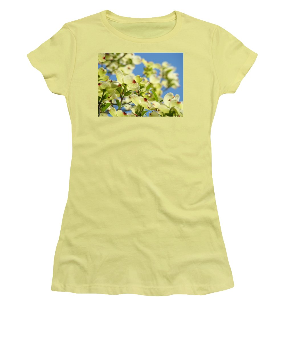 Dogwood Women's T-Shirt (Athletic Fit) featuring the photograph Flowering Dogwood Tree Art Print White Dogwood Flowers Blue Sky Art by Baslee Troutman