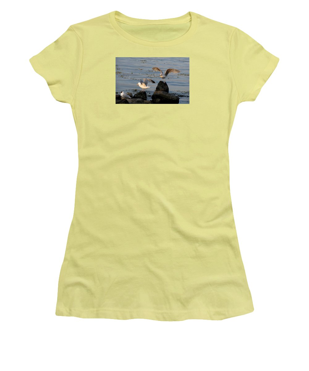 Birds Women's T-Shirt (Athletic Fit) featuring the photograph Seaguls 3 by Cristina Rettegi