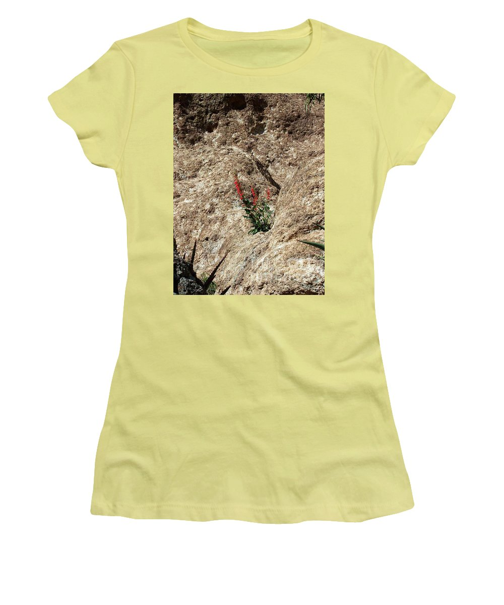 Wildflowers; Flowers Women's T-Shirt (Athletic Fit) featuring the photograph Tenacity by Kathy McClure
