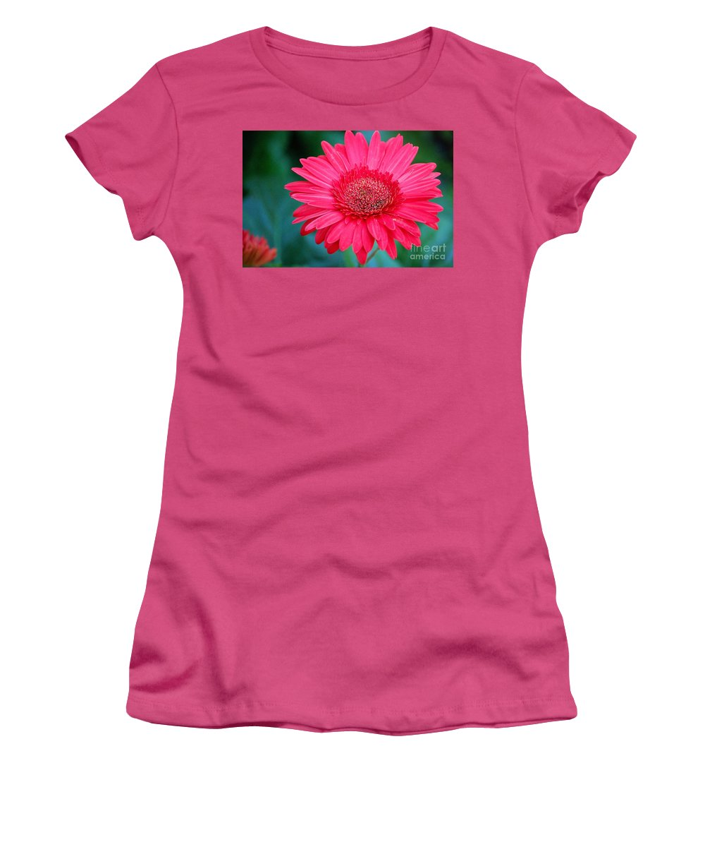Gerber Daisy Women's T-Shirt (Athletic Fit) featuring the photograph In The Pink by Debbi Granruth