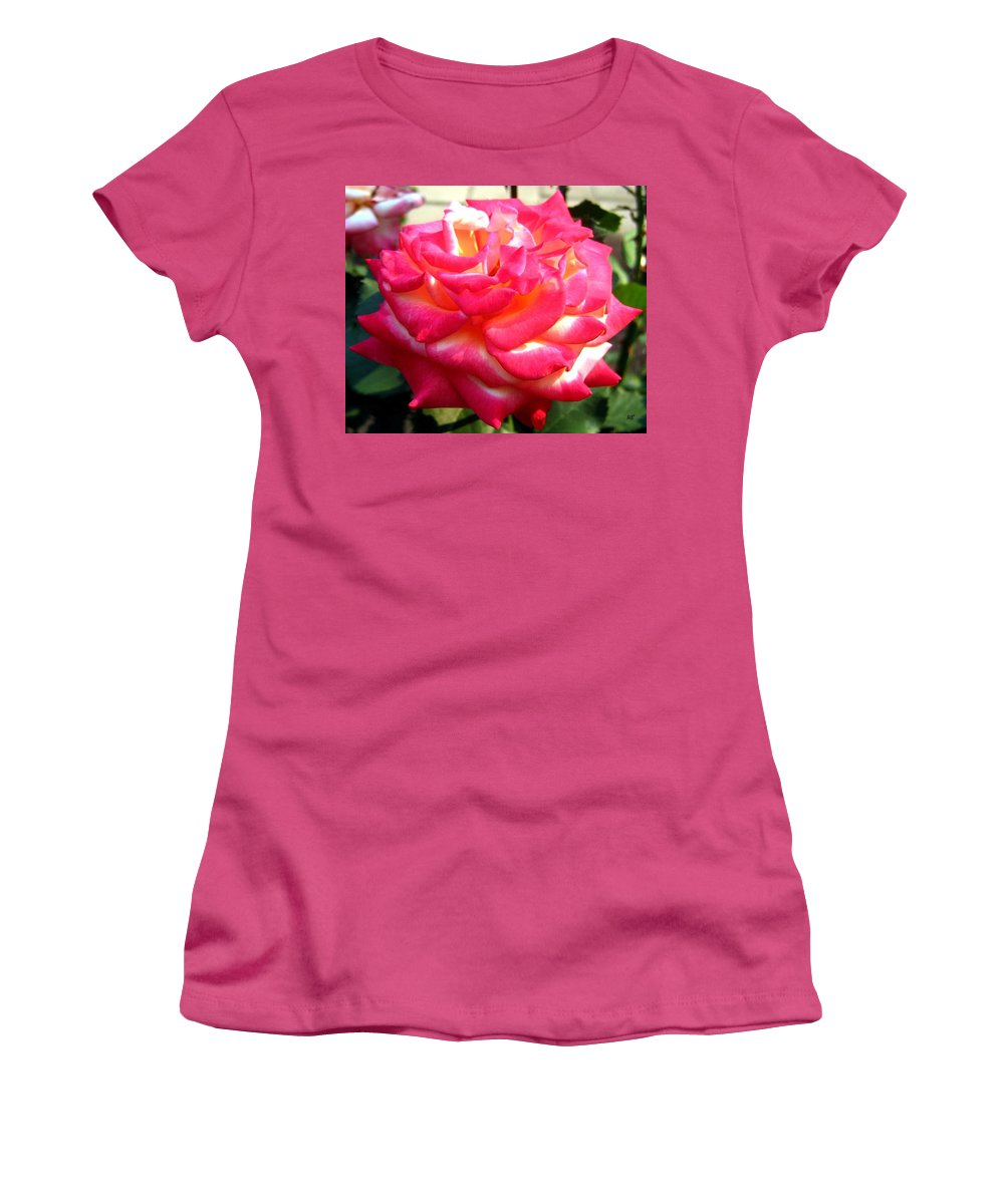 Rose Women's T-Shirt (Athletic Fit) featuring the photograph Pink Perfection by Will Borden