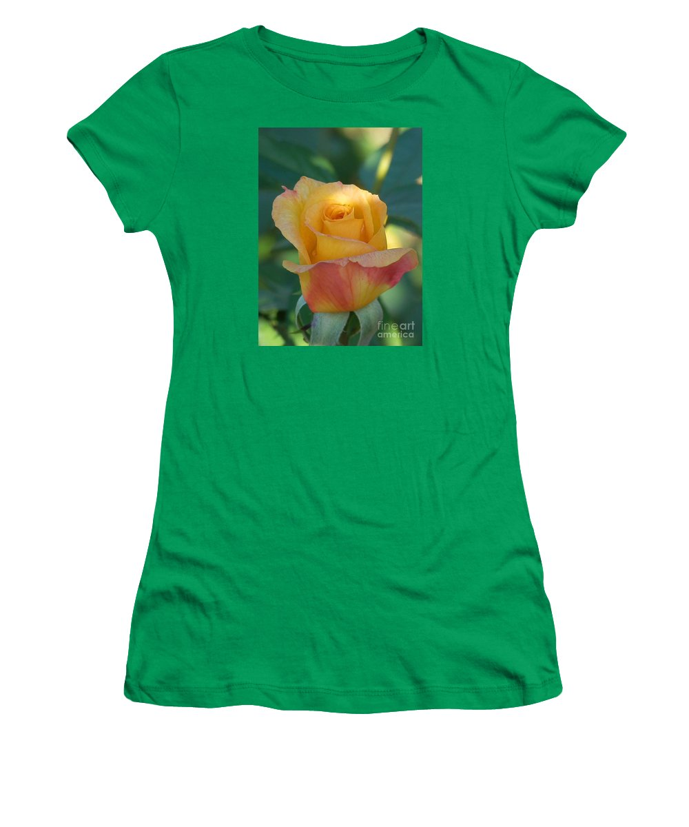 Diane Dimarco Art Women's T-Shirt featuring the photograph Hidden In Shade by Diane DiMarco