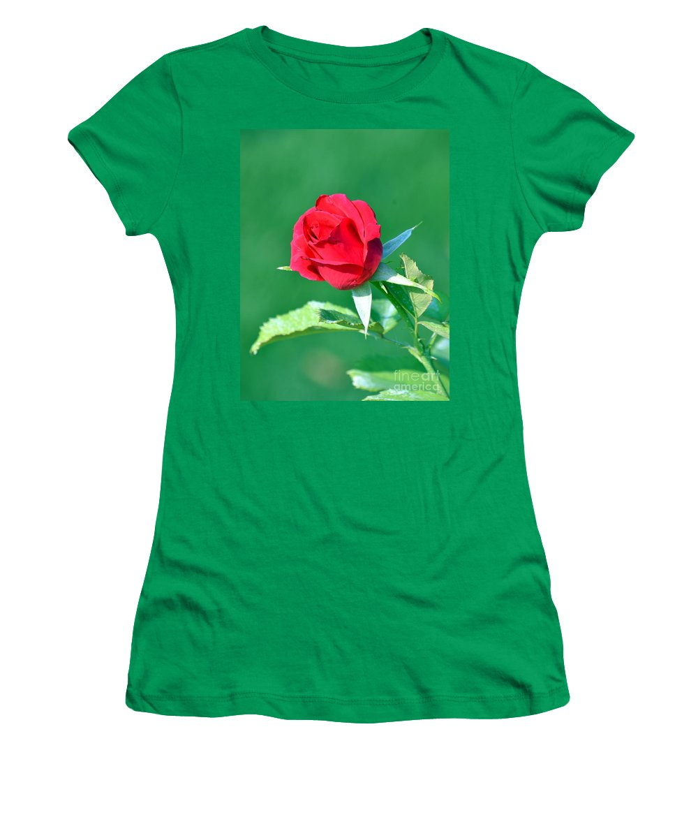 Rose Women's T-Shirt featuring the photograph Red Rose With Star-shaped Collar by Maria Urso