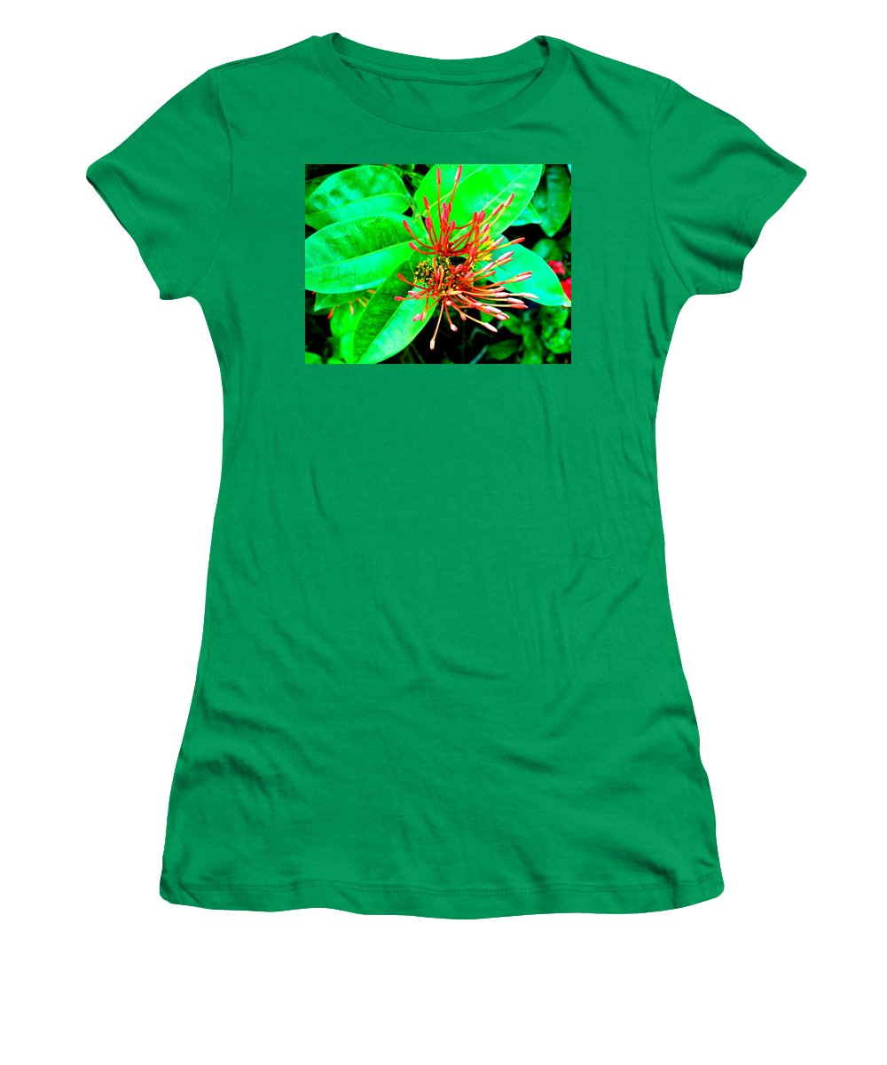 Flower Women's T-Shirt (Athletic Fit) featuring the photograph In My Garden by Ian MacDonald