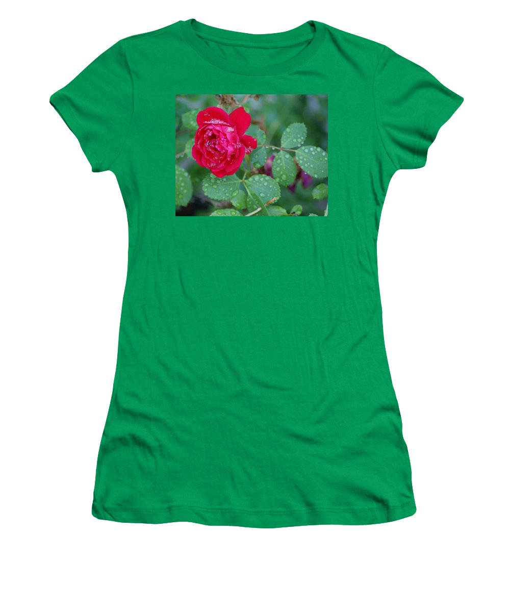 Flowers Women's T-Shirt featuring the photograph Morning Dew On A Rose by Ben Upham III