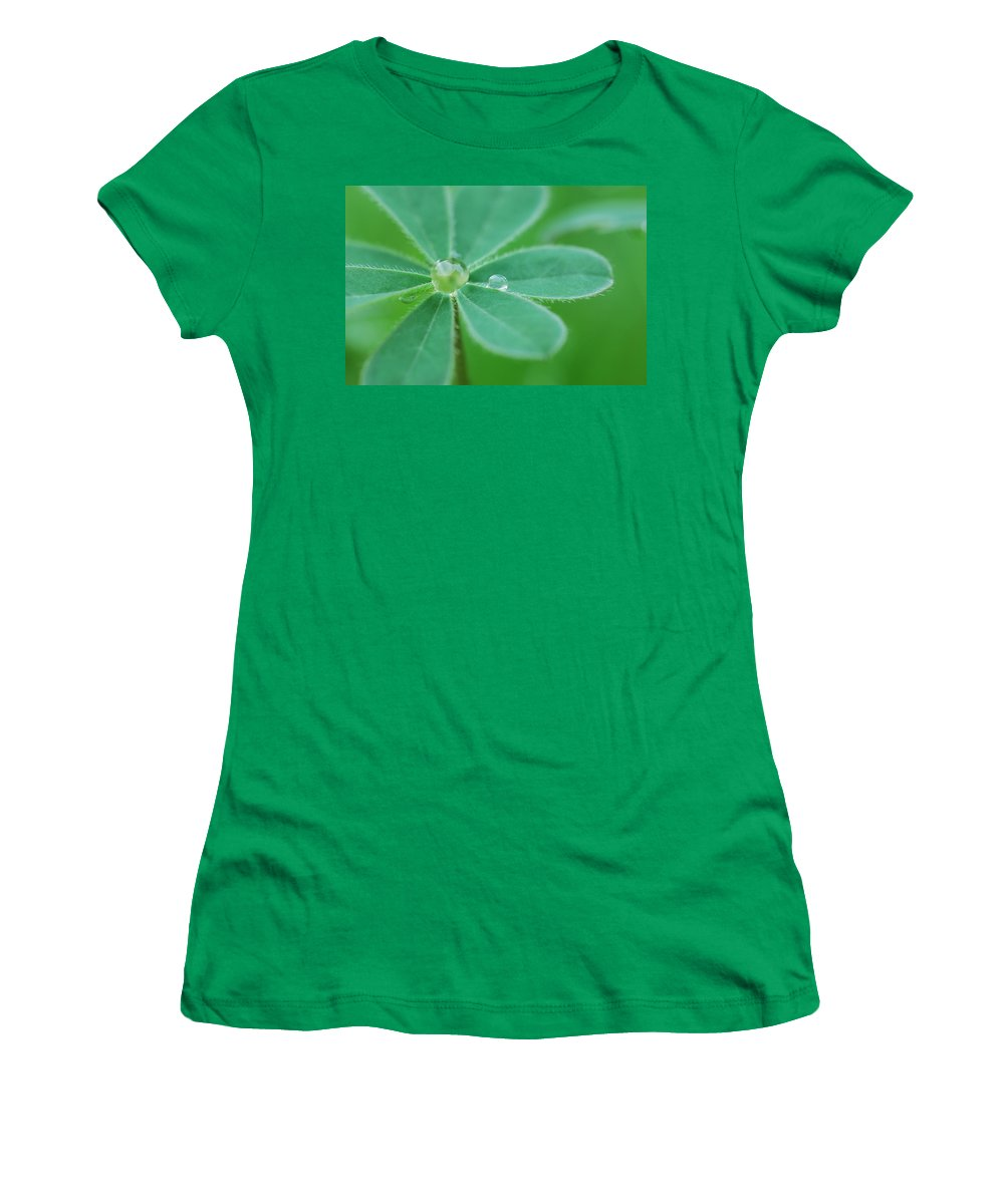 Plant Women's T-Shirt featuring the photograph Retaining Water by Donna Blackhall