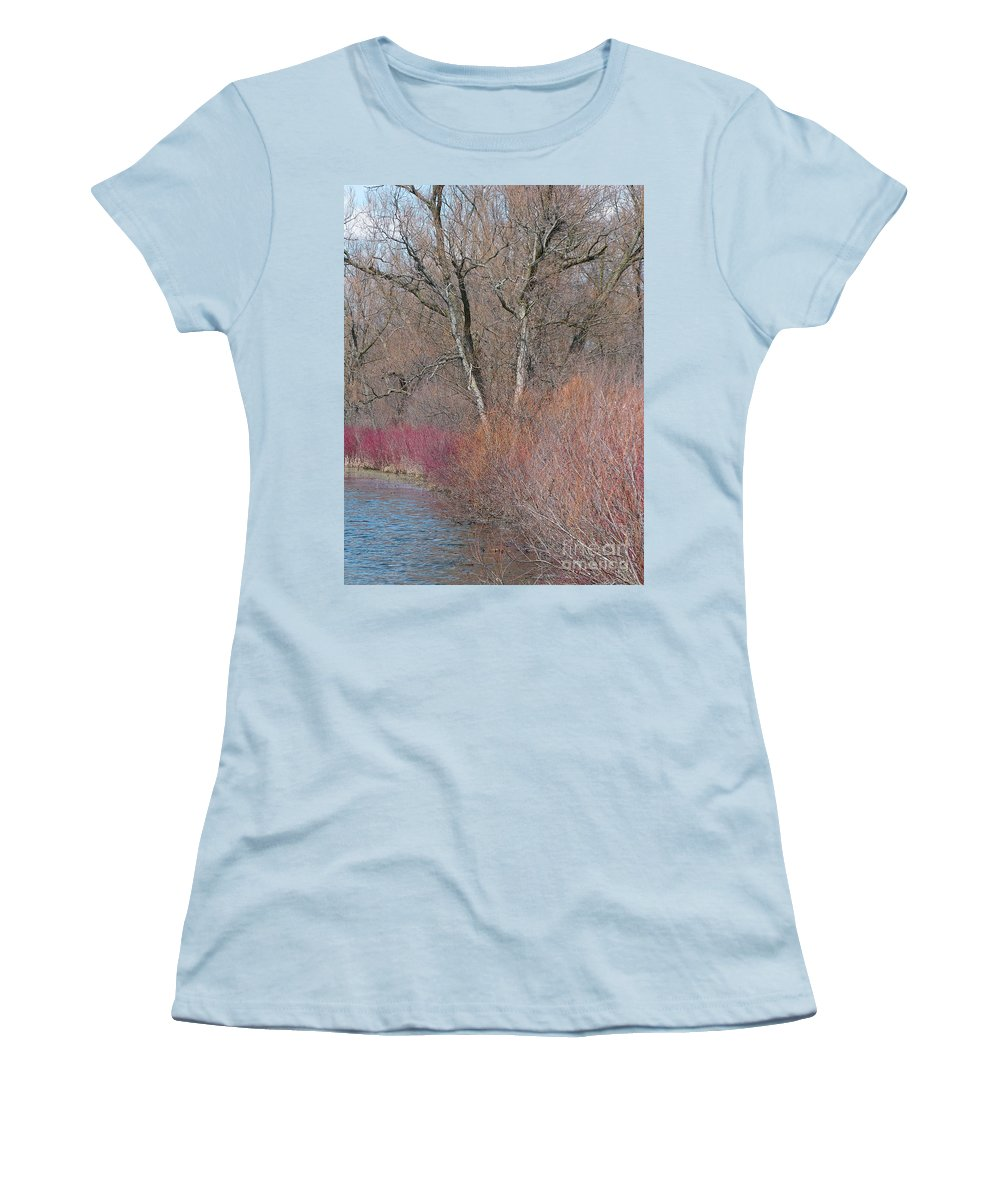 Spring Women's T-Shirt (Athletic Fit) featuring the photograph Hint Of Spring by Ann Horn