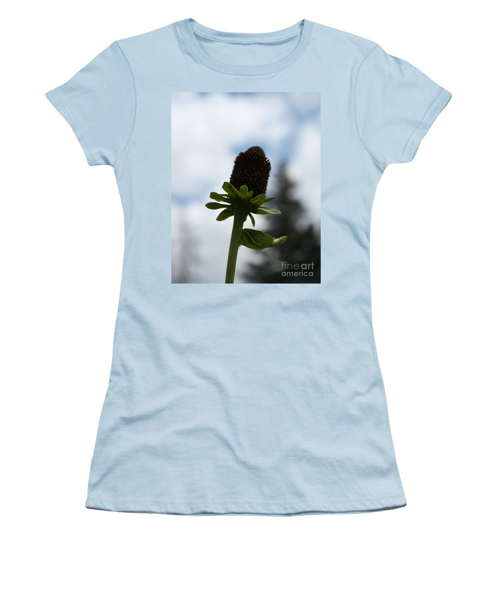 Flower Women's T-Shirt (Athletic Fit) featuring the photograph Sky Flower by Brandi Maher