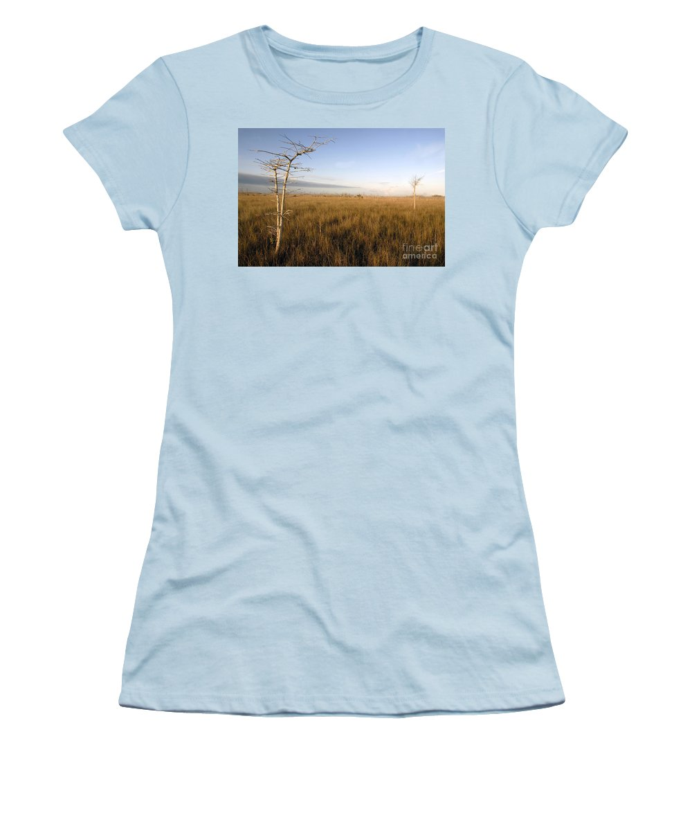 Bald Cypress Women's T-Shirt (Athletic Fit) featuring the photograph Big Cypress by David Lee Thompson