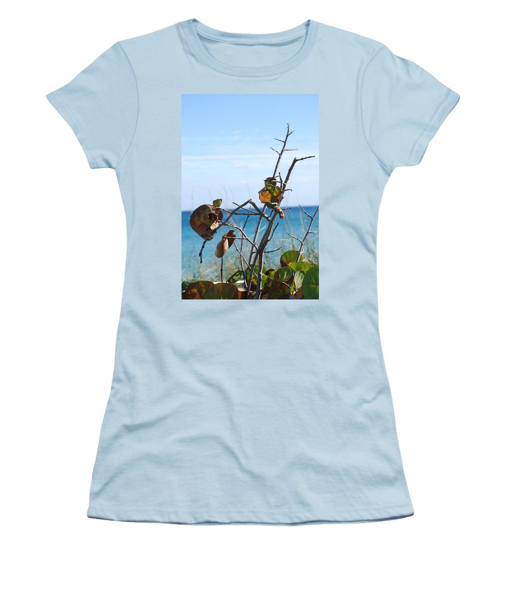 Ocean Women's T-Shirt (Athletic Fit) featuring the photograph Dune Plants by Rob Hans