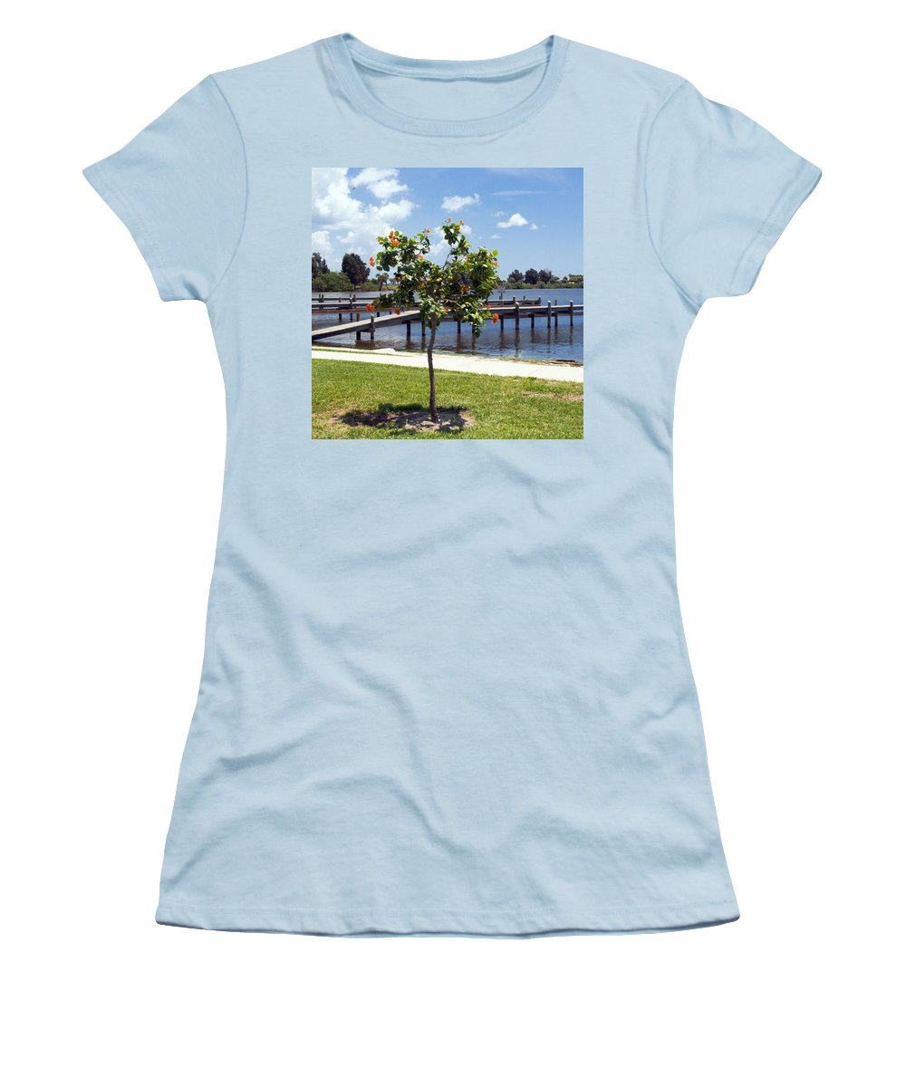 Hibiscus; Rosasinensis; Rosa; Sinensis; Rosa-sinensis; Tree; Bush; Shrub; Plant; Flower; Flowers; Fl Women's T-Shirt (Athletic Fit) featuring the photograph Hibiscus Rosasinensis With Fruit On The Indian River In Florida by Allan Hughes