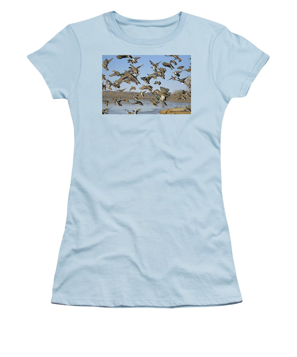 Nature Feather Women's T-Shirt (Athletic Fit) featuring the photograph Mad Rush by Robert Pearson