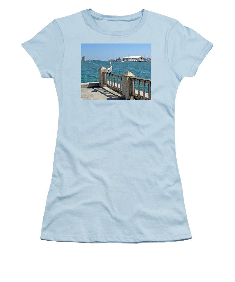 Port; Canaveral; Pelican; Gaze; Florida; Wildlife; Florida; Harbor; Atlantic; Ocean; Sea; Bird; Wate Women's T-Shirt (Athletic Fit) featuring the photograph Pelican Gazing At Port Canaveral In Florida by Allan Hughes