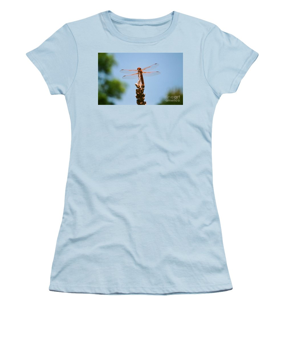 Dragonfly Women's T-Shirt (Athletic Fit) featuring the photograph Red Dragonfly by Dean Triolo