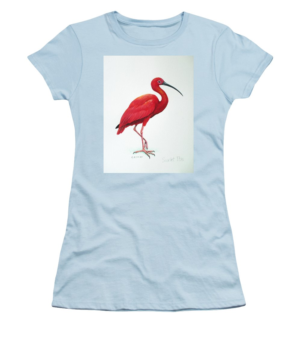 Scarlet Ibis Women's T-Shirt (Athletic Fit) featuring the painting Scarlet Ibis by Christopher Cox