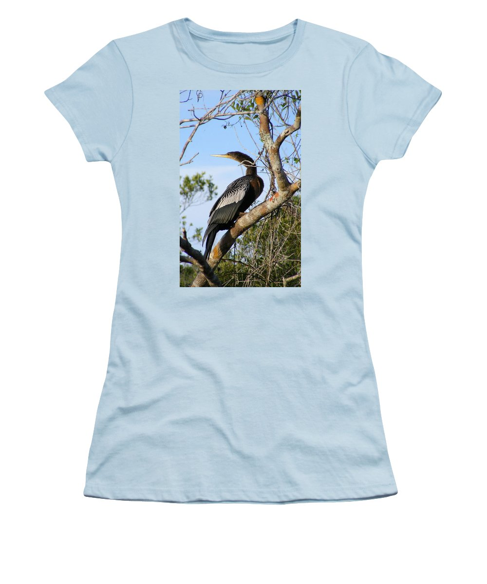 Bird Women's T-Shirt (Athletic Fit) featuring the photograph Strike A Pose by Ed Smith