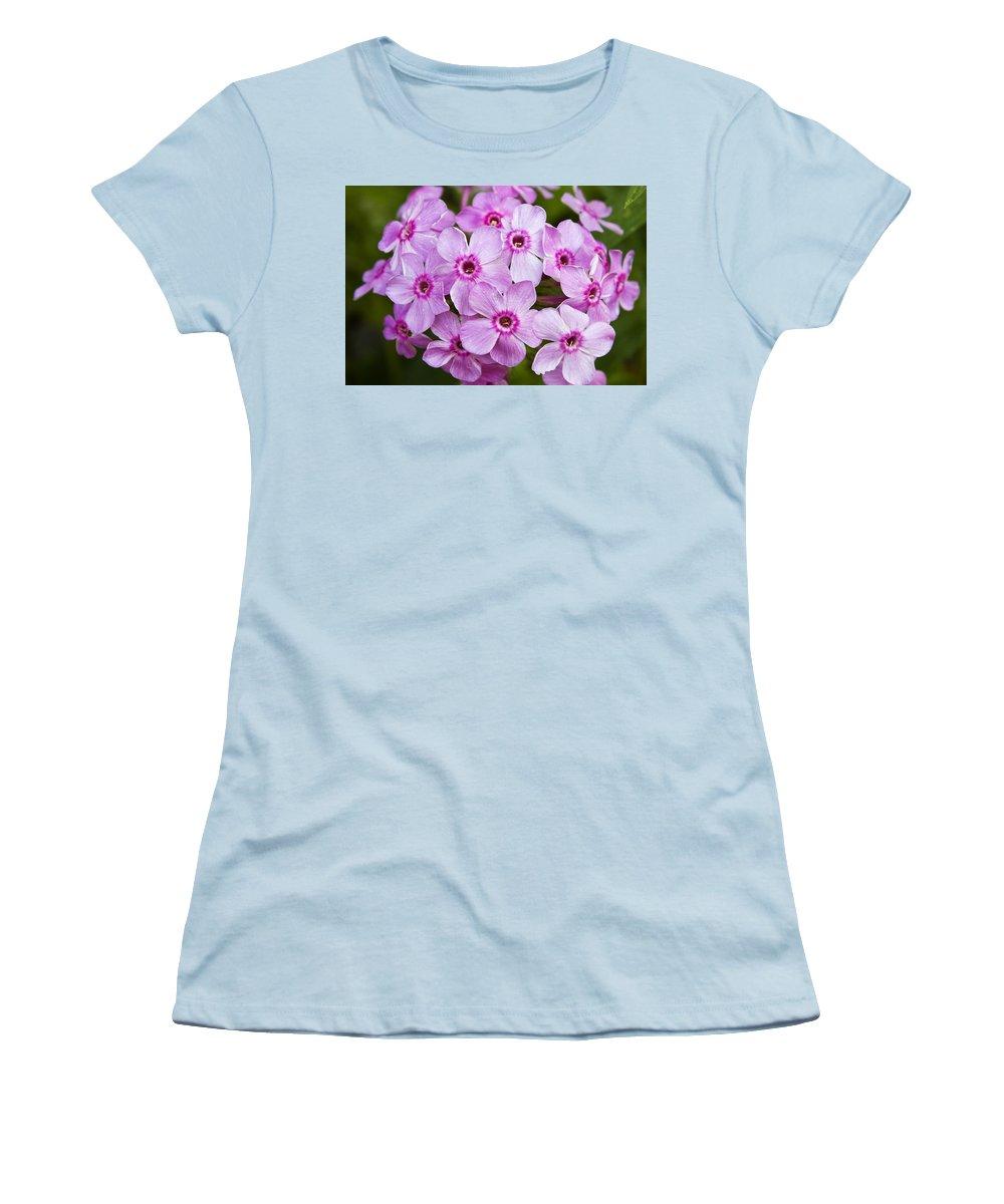 Phlox Women's T-Shirt (Athletic Fit) featuring the photograph Tall Garden Phlox by Teresa Mucha