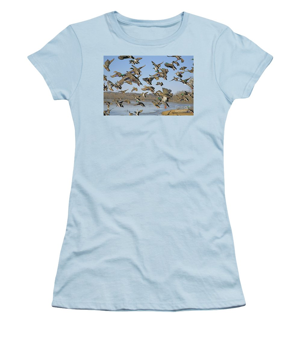 Ducks Women's T-Shirt (Athletic Fit) featuring the photograph The Mad Rush by Robert Pearson