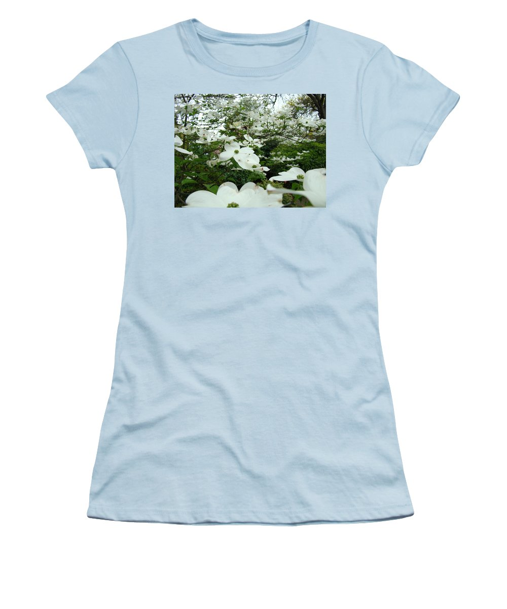 Dogwood Women's T-Shirt (Athletic Fit) featuring the photograph White Dogwood Flowers 6 Dogwood Tree Flowers Art Prints Baslee Troutman by Baslee Troutman