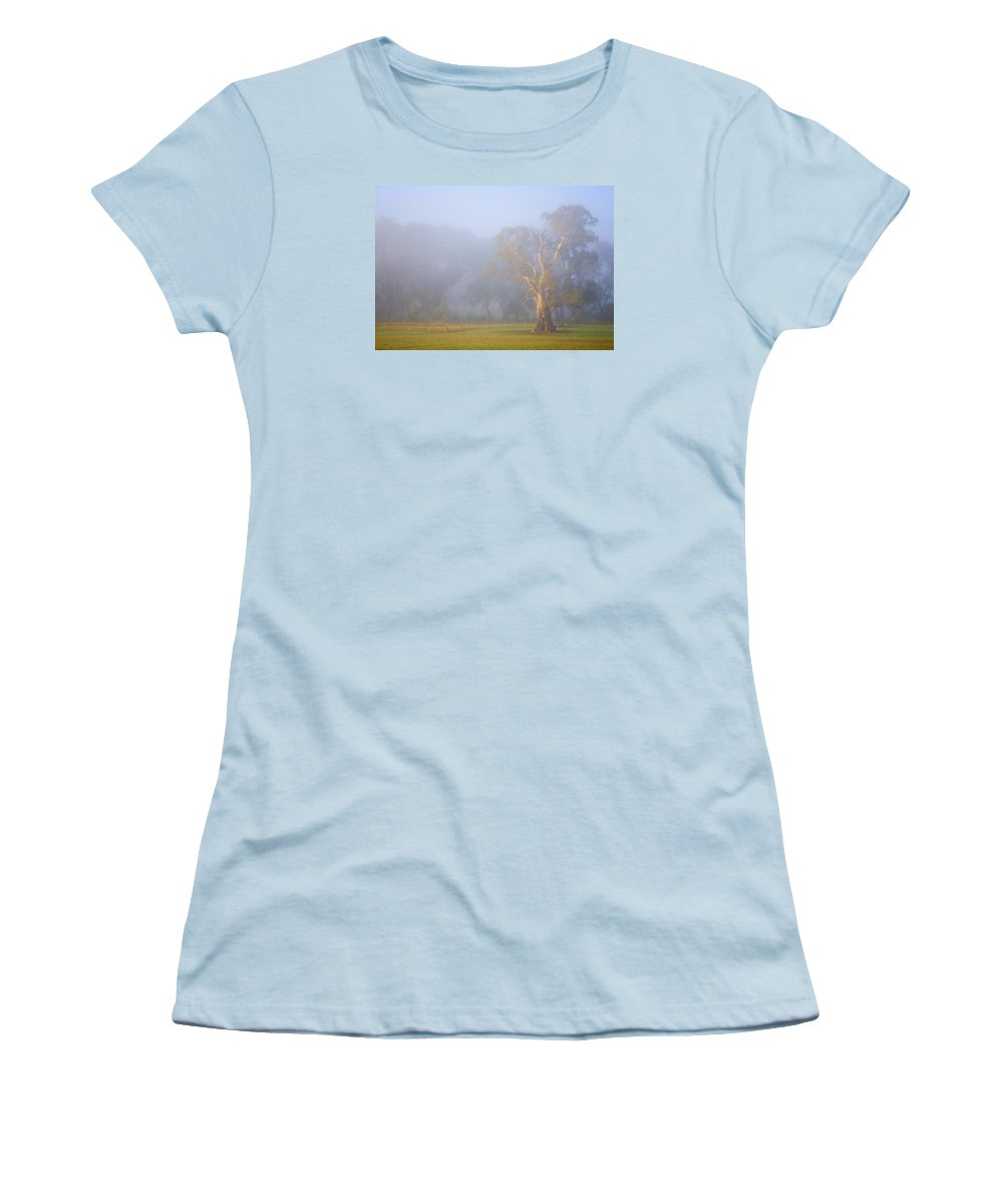 Tree Women's T-Shirt (Athletic Fit) featuring the photograph White Gum Morning by Mike Dawson