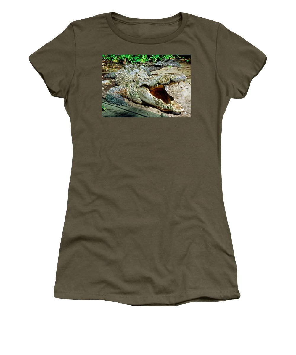 American Crocodile Women's T-Shirt featuring the photograph American Crocodile by Millard H. Sharp