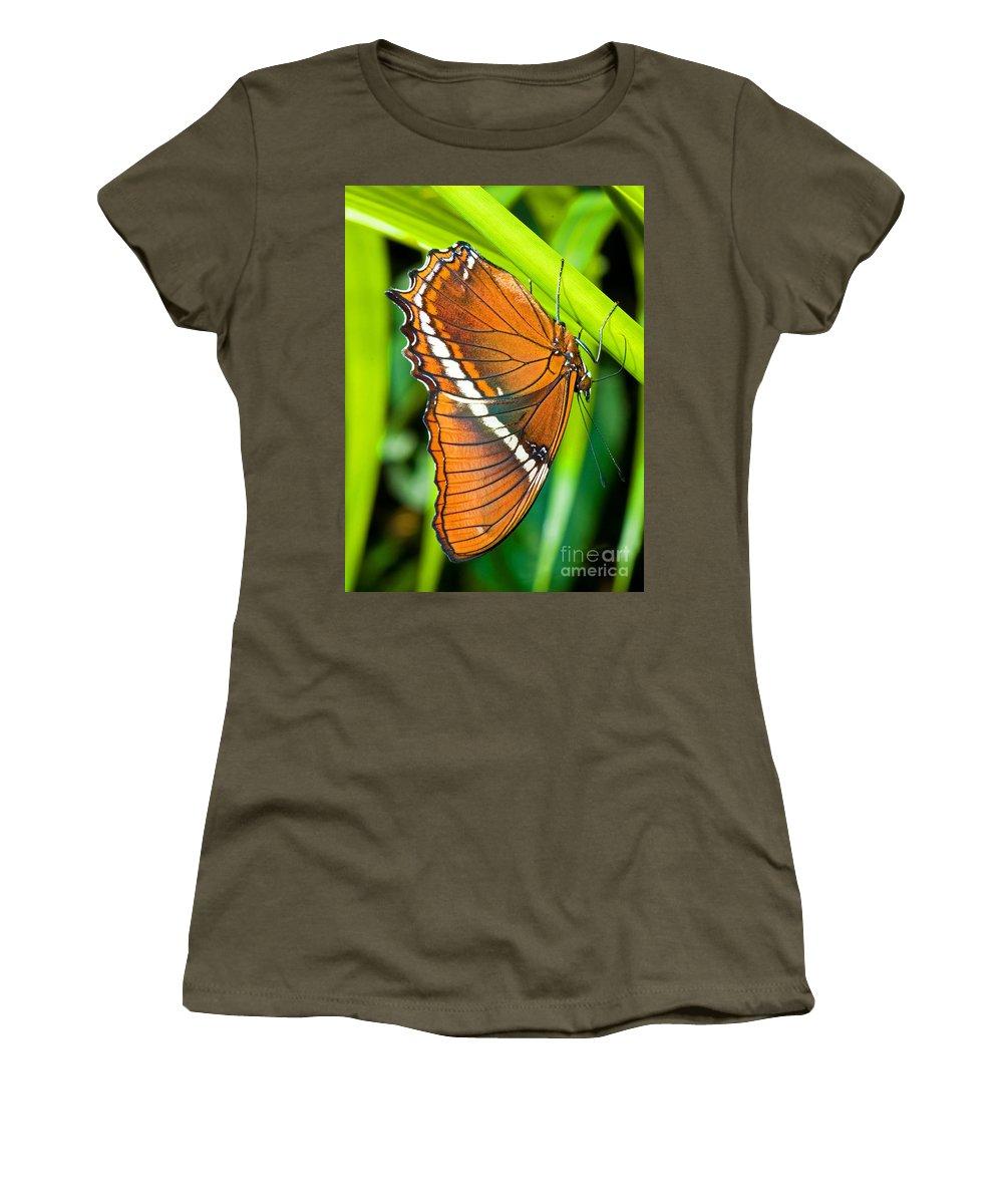 Nature Women's T-Shirt featuring the photograph Autumn Leaf Butterfly by Millard H. Sharp