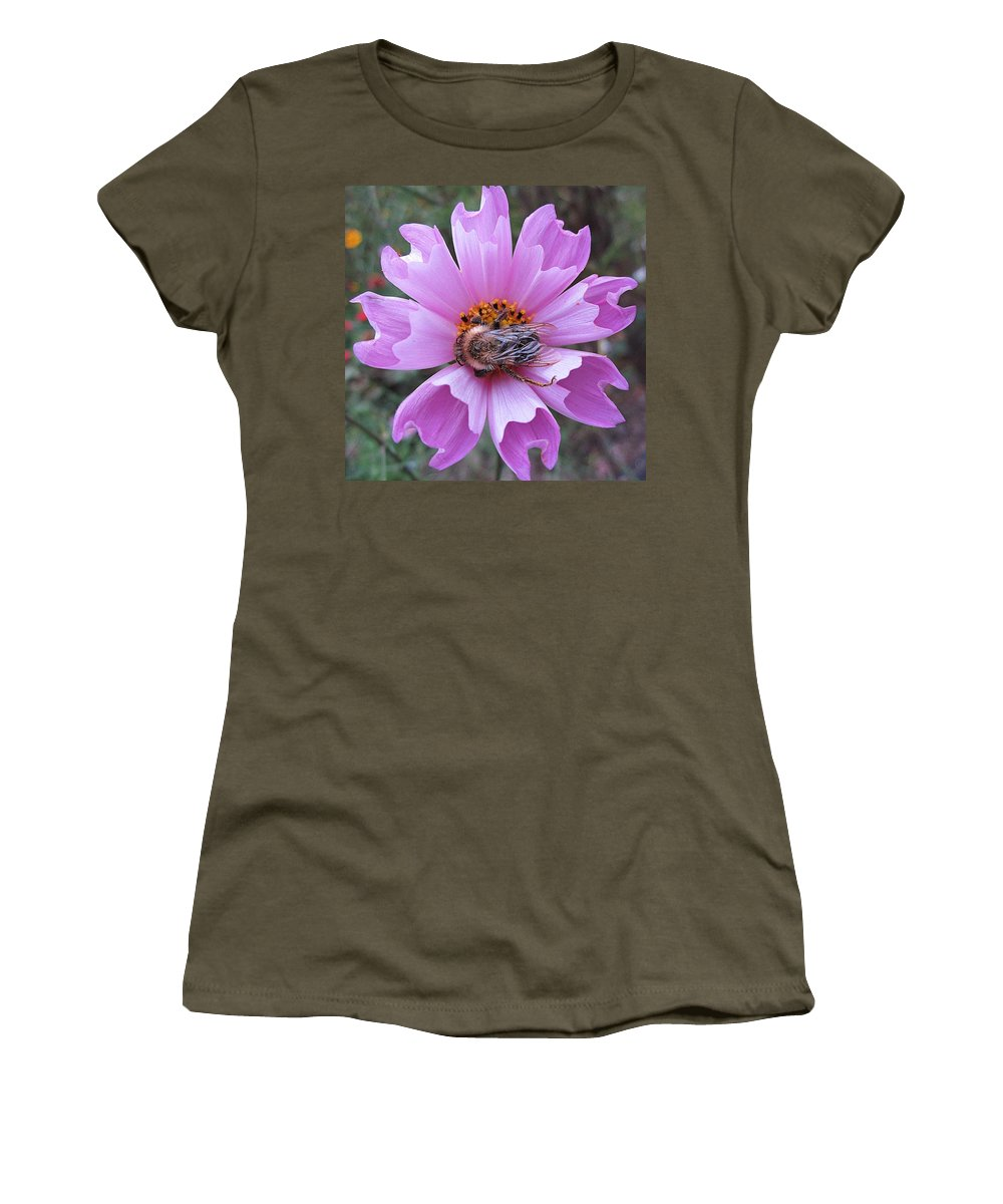 Bee Women's T-Shirt featuring the photograph Bee On Cosmos by MTBobbins Photography