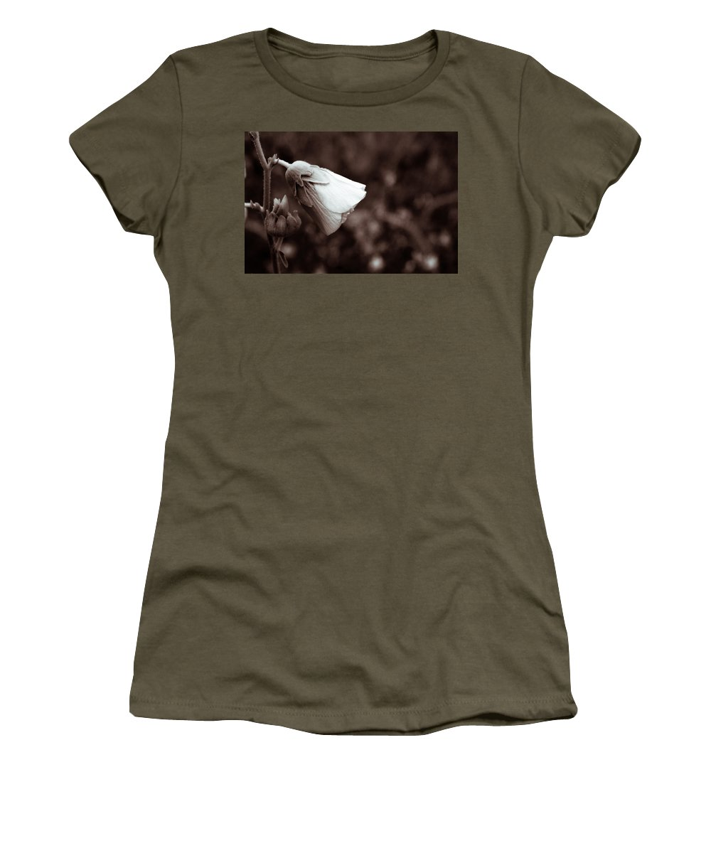 Bloom Women's T-Shirt (Athletic Fit) featuring the photograph Blooming by Lauri Novak