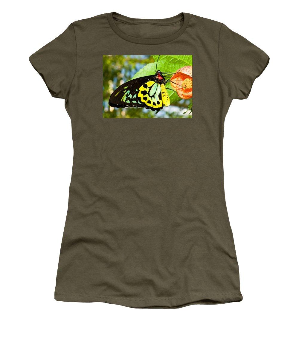 Nature Women's T-Shirt featuring the photograph Common Birdwing Butterfly by Millard H. Sharp