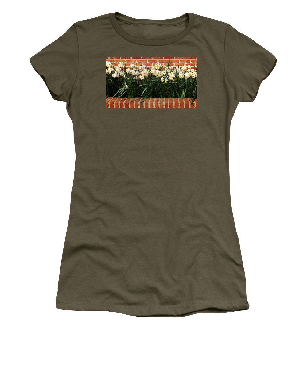 Closeup Women's T-Shirt featuring the photograph Daffodils by TouTouke A Y