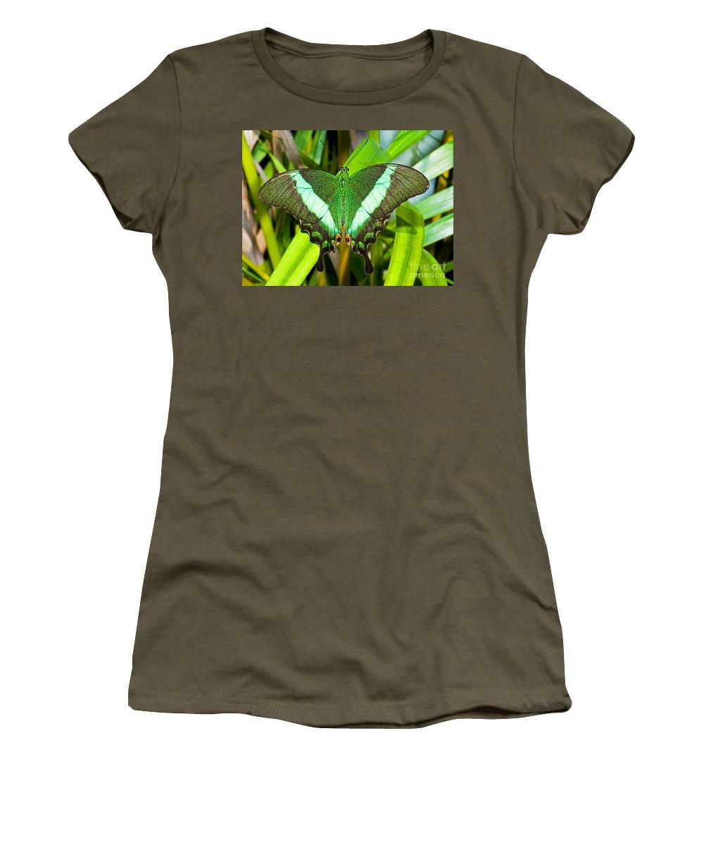 Nature Women's T-Shirt featuring the photograph Emerald Swallowtail Butterfly by Millard H. Sharp