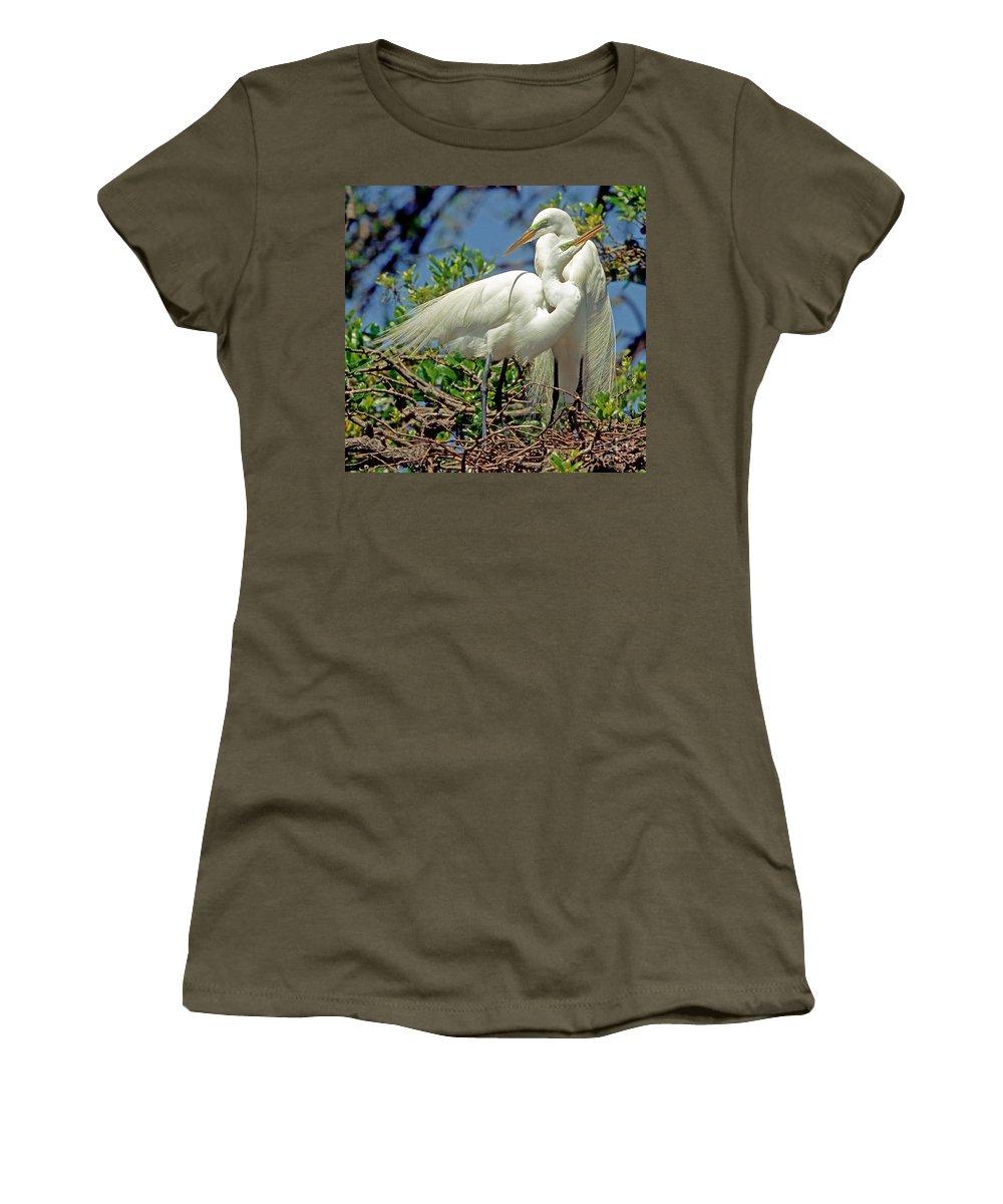 Fauna Women's T-Shirt featuring the photograph Great Egret by Millard H Sharp