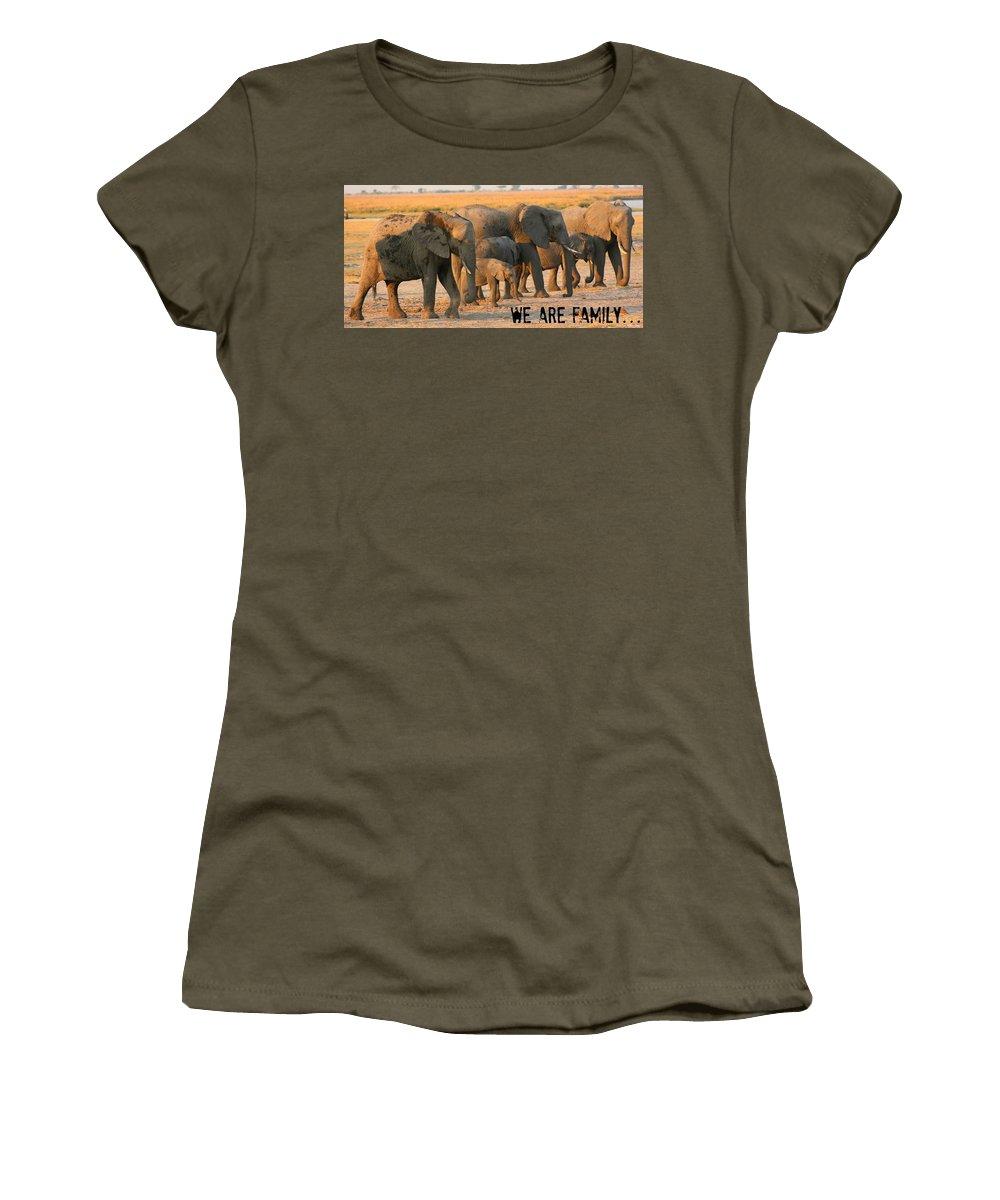 Elephants Women's T-Shirt featuring the photograph Kalahari Elephants by Amanda Stadther