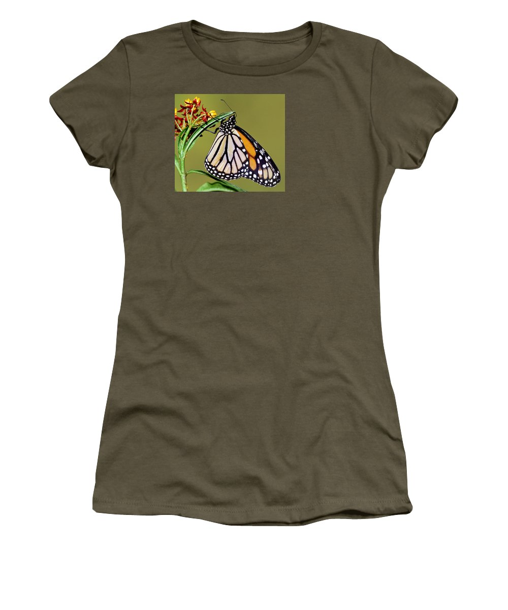 Animal Women's T-Shirt featuring the photograph Monarch Butterfly by Millard H Sharp
