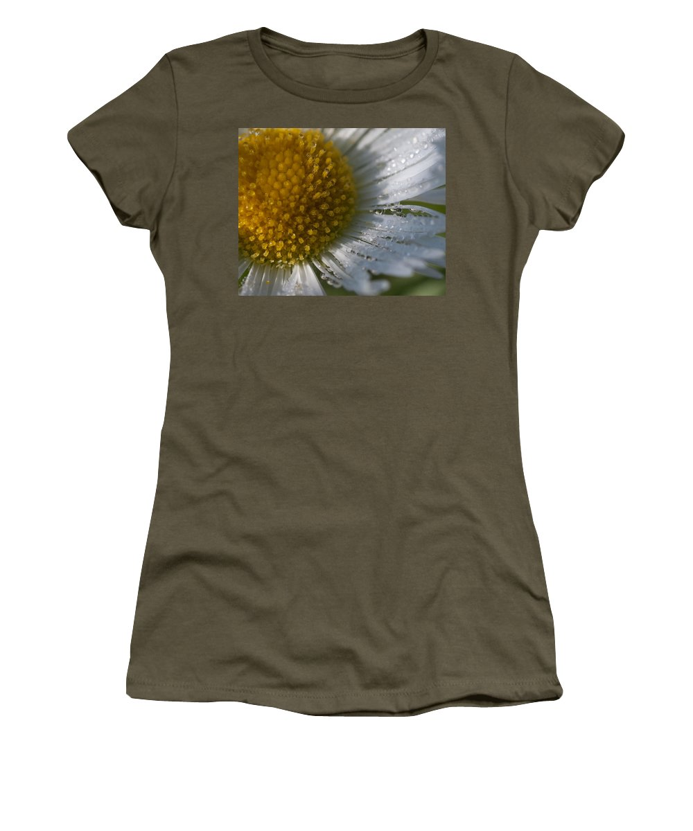 Herbaceous Perennial Plant Women's T-Shirt featuring the photograph Mornings Dew by Jeff Folger
