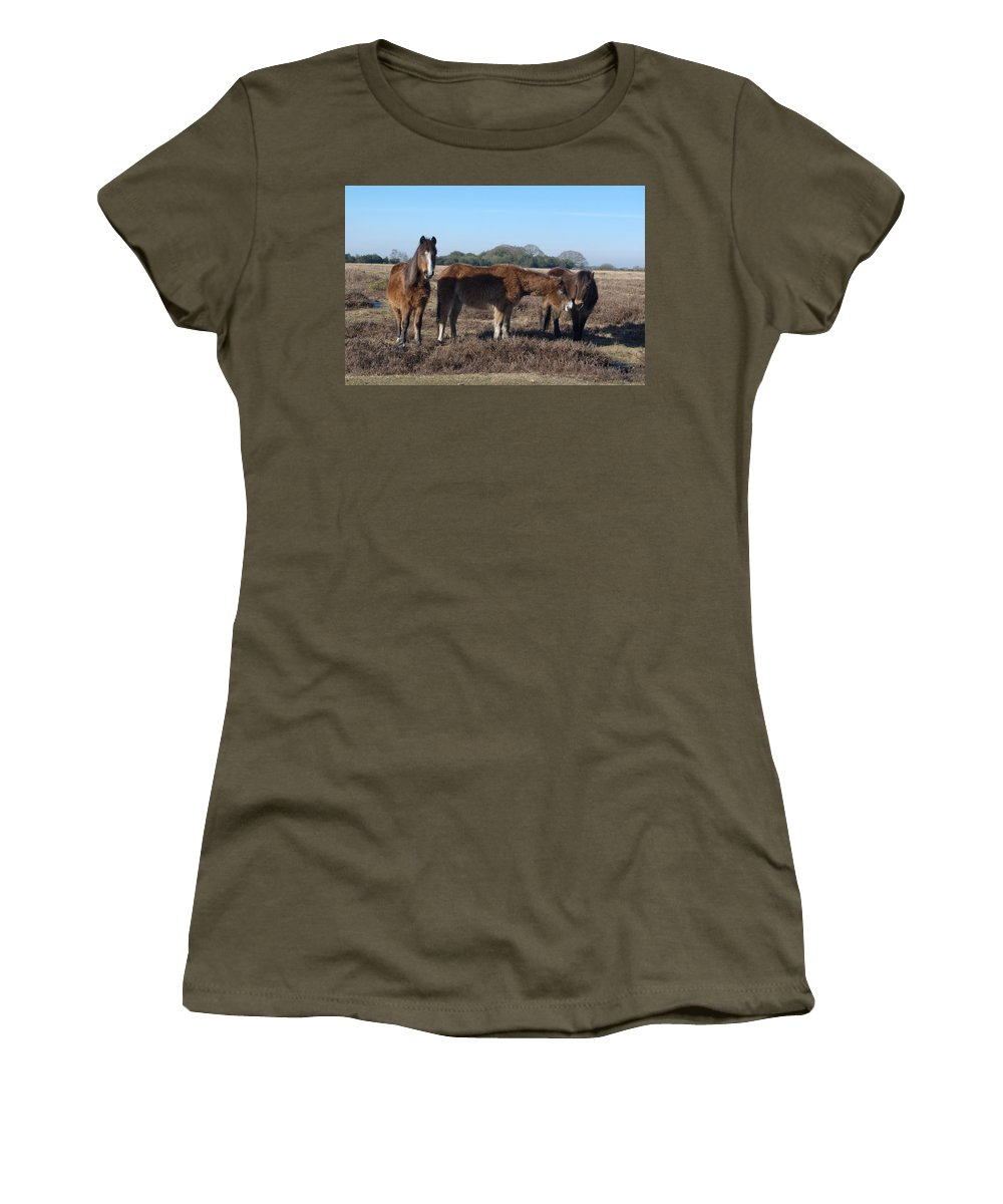 New Forest Pony Women's T-Shirt featuring the photograph New Forest Ponies by Chris Day