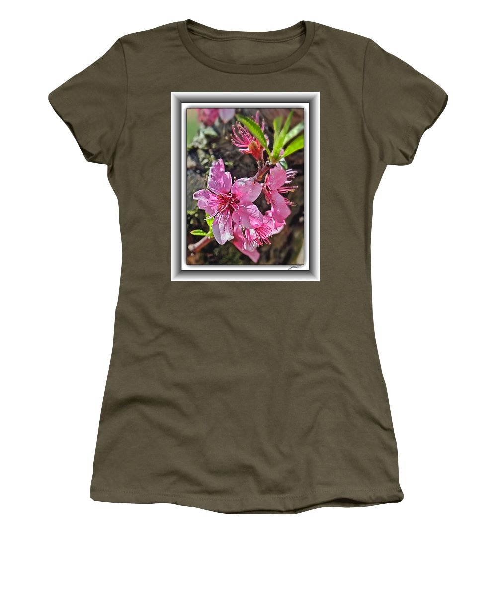 Flowers Women's T-Shirt featuring the photograph Peach Blossoms by Thomas Fields