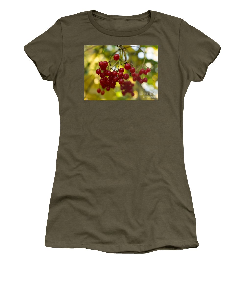 Wild Red Berries Women's T-Shirt featuring the photograph Red Berries by Brothers Beerens