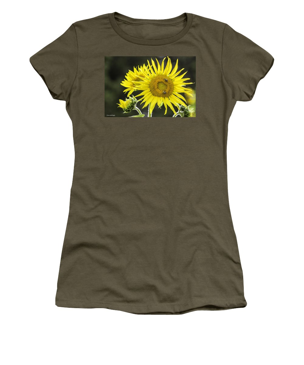 Bees Women's T-Shirt featuring the photograph Sunflowers by Fran Gallogly