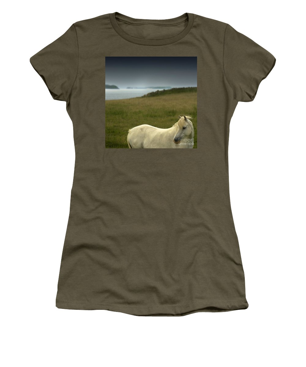 Welsh Pony Women's T-Shirt (Athletic Fit) featuring the photograph The Welsh Pony by Angel Tarantella