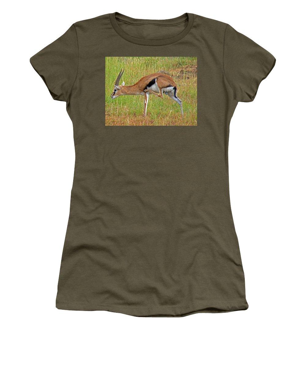Gazelle Women's T-Shirt featuring the photograph Thomson's Gazelle by Tony Murtagh