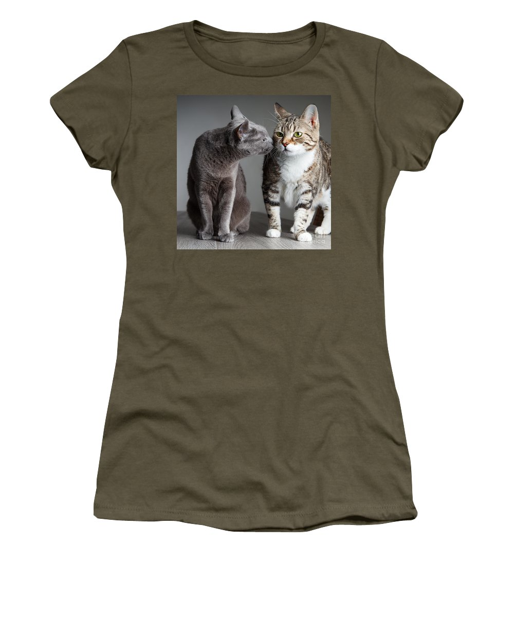 Cat Women's T-Shirt featuring the photograph Two Cats by Nailia Schwarz