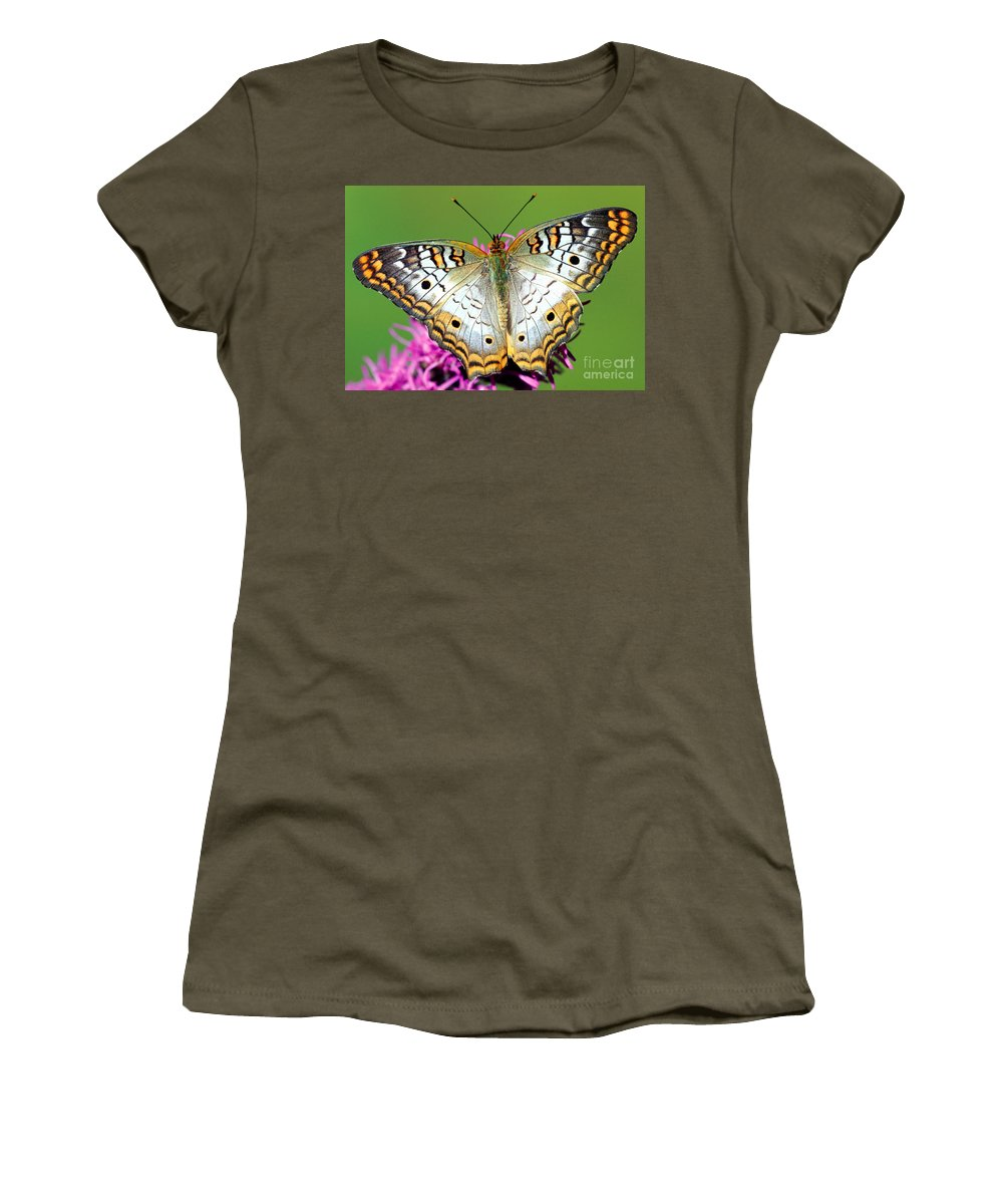 White Peacock Butterfly Women's T-Shirt featuring the photograph White Peacock Butterfly Anartia by Millard H. Sharp