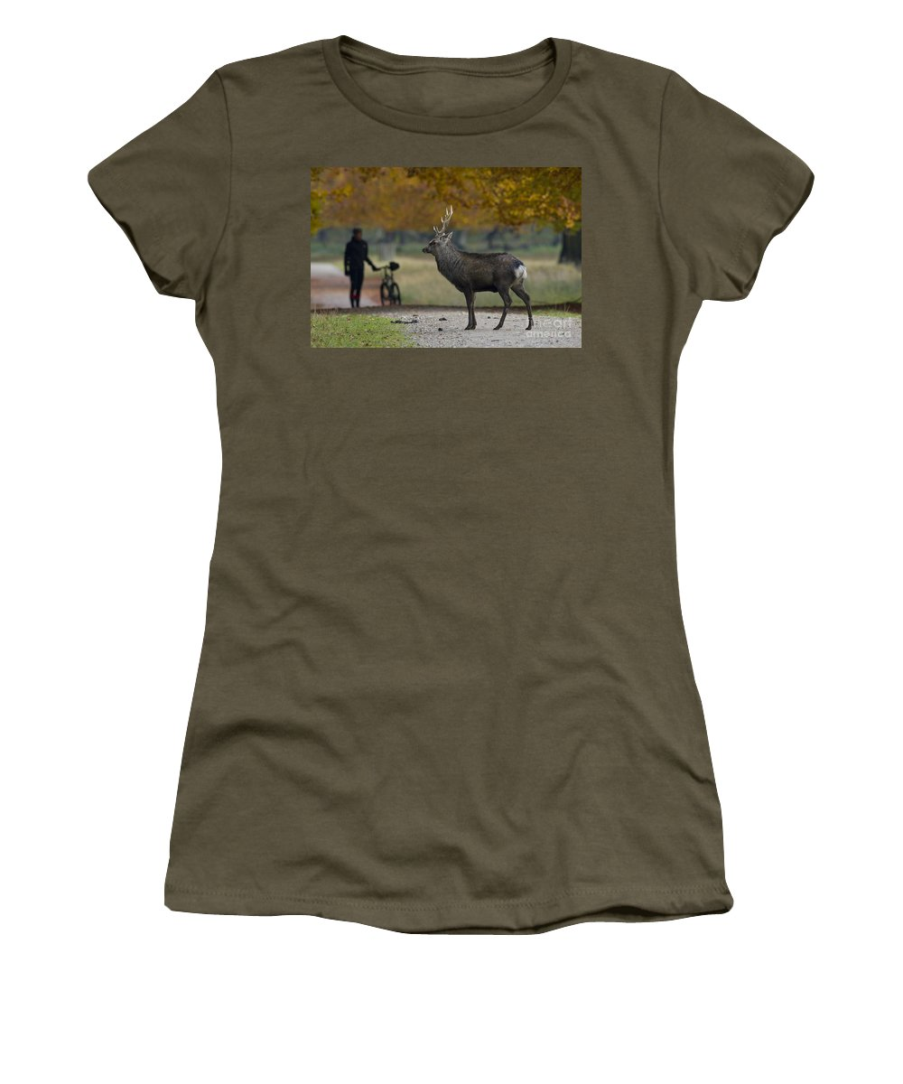Sika Deer Women's T-Shirt featuring the photograph 110307p071 by Arterra Picture Library