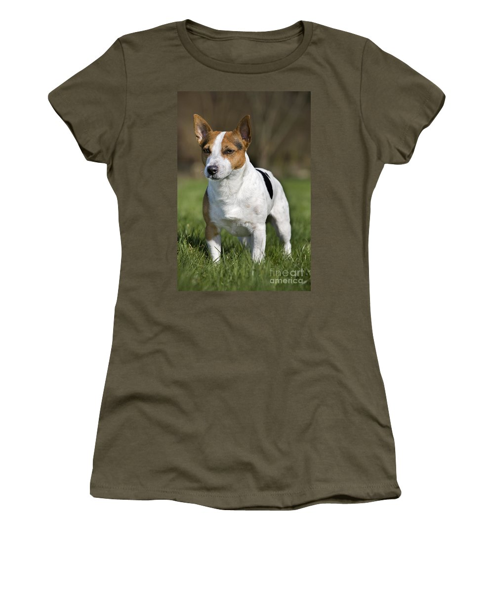 Mammal Women's T-Shirt featuring the photograph 110506p195 by Arterra Picture Library